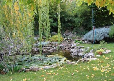 jezerce u vrtu