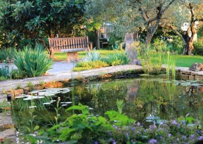 vrtno jezerce sa lopočima
