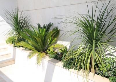 modernistički vrt