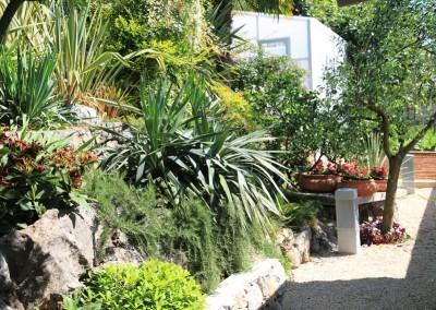 kamenjar i biljke za kamenjare