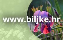 www.biljke.hr